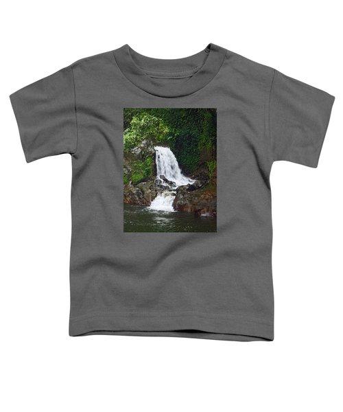 Mini Waterfall Toddler T-Shirt