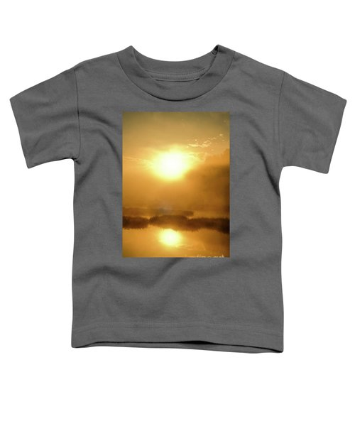 Misty Gold Toddler T-Shirt
