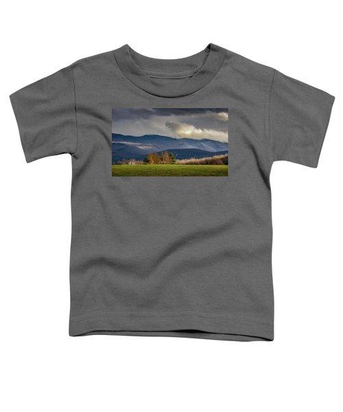 Mountain Weather Toddler T-Shirt