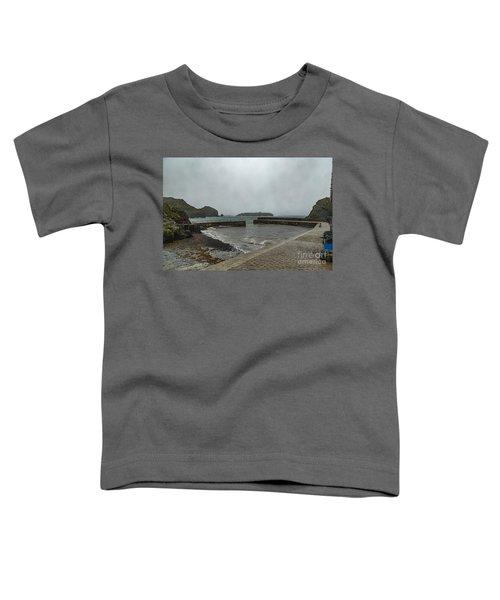 Mullion Cove Toddler T-Shirt