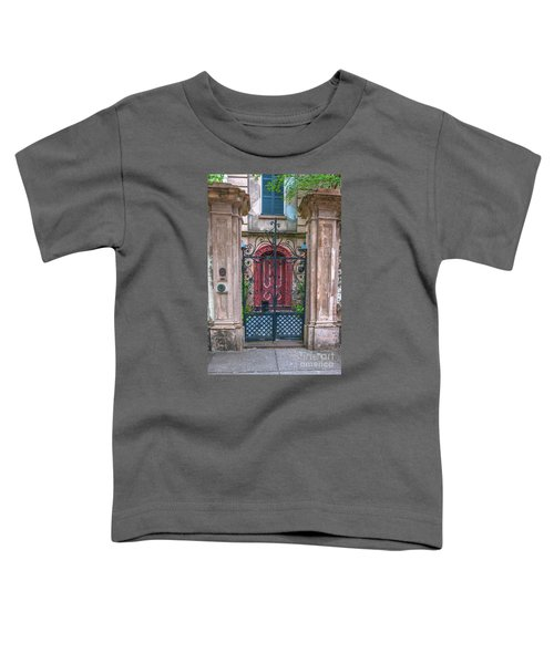 Narrow Is The Gate Toddler T-Shirt