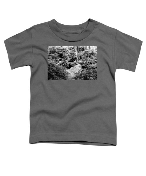 Native American Caves  Toddler T-Shirt
