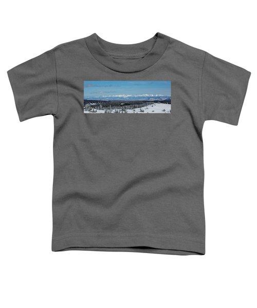 Never Summer  Toddler T-Shirt