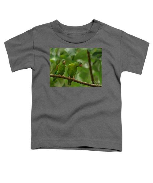 Orange -chinned Parakeets  Toddler T-Shirt