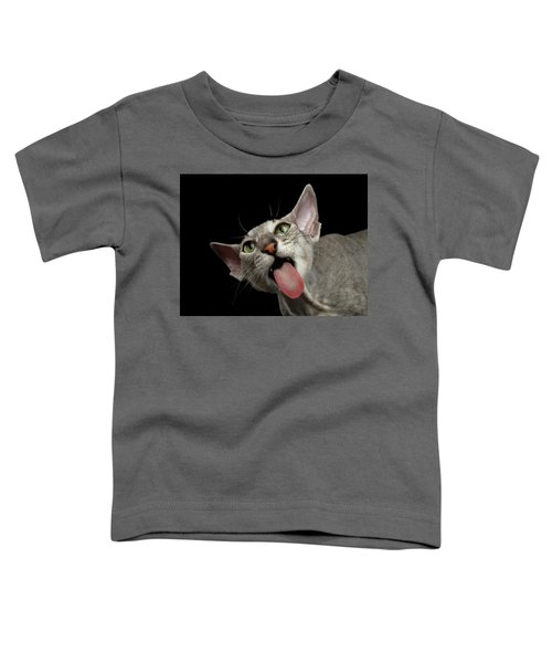 Peterbald Sphynx Cat On Black Background Toddler T-Shirt