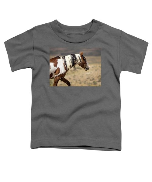 Picasso Of Sand Wash Basin Toddler T-Shirt
