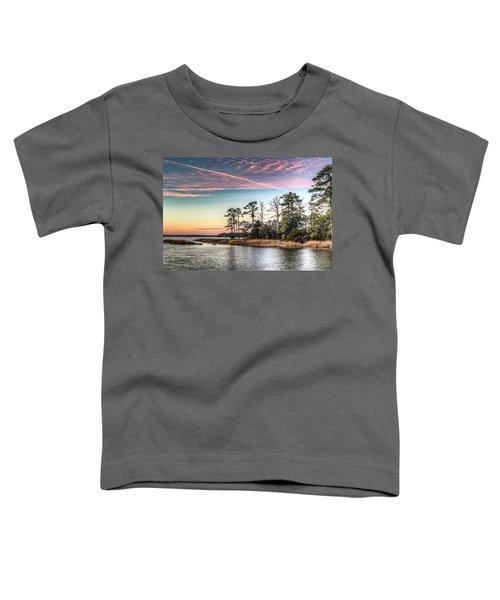 Pink Sky At Night Toddler T-Shirt