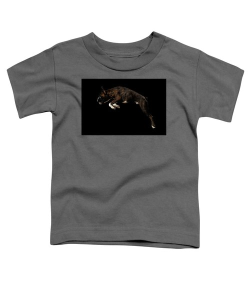 Purebred Boxer Dog Isolated On Black Background Toddler T-Shirt