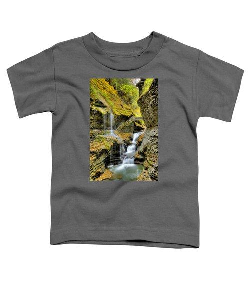 Rainbow Falls  Toddler T-Shirt