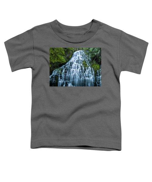 Ramona Falls Cascade Toddler T-Shirt