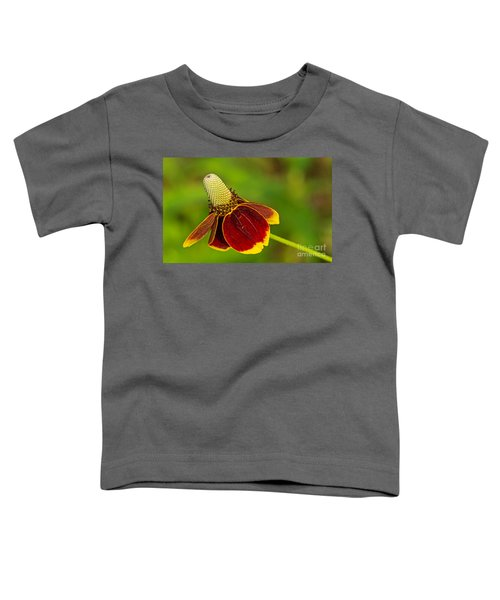 Ratibida Columnifera Toddler T-Shirt