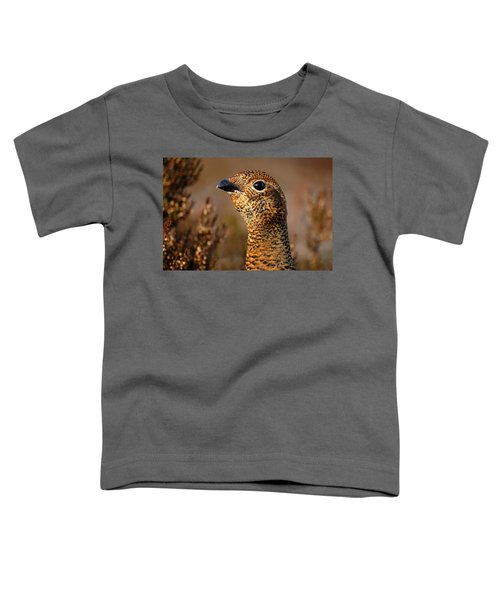 Red Grouse  Toddler T-Shirt