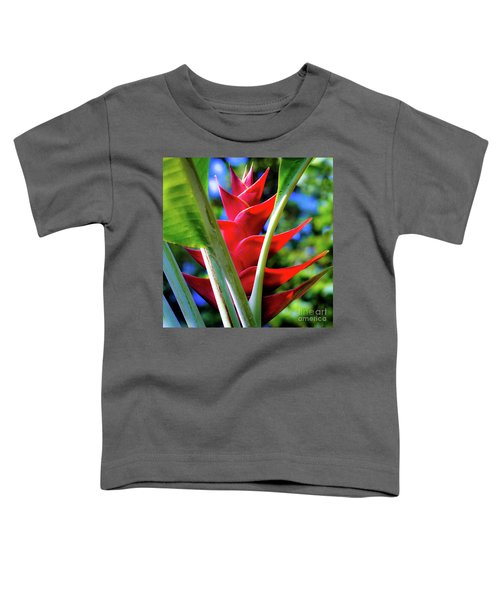Red Heliconia Hawaii Toddler T-Shirt