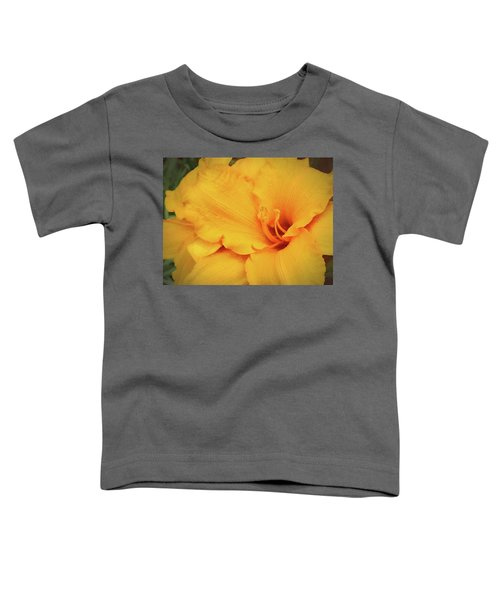Softly And Tenderly  Toddler T-Shirt