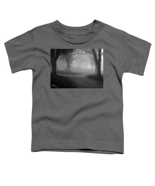 Split Toddler T-Shirt