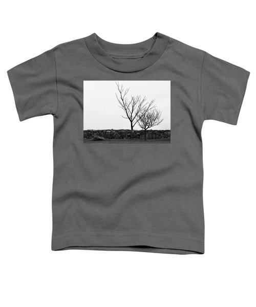 Stone Wall With Trees In Winter Toddler T-Shirt