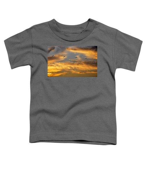 Sunset Flight Toddler T-Shirt