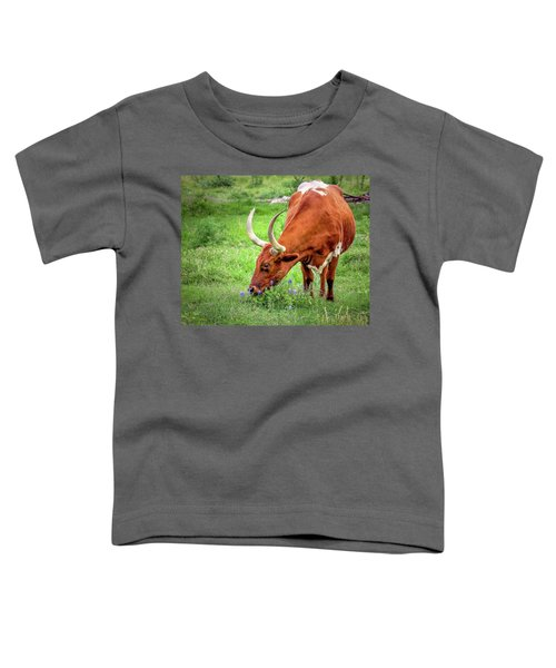 Texas Longhorn Grazing Toddler T-Shirt