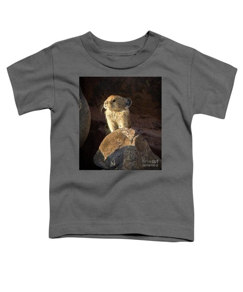 The Coast Is Clear Wildlife Photography By Kaylyn Franks Toddler T-Shirt