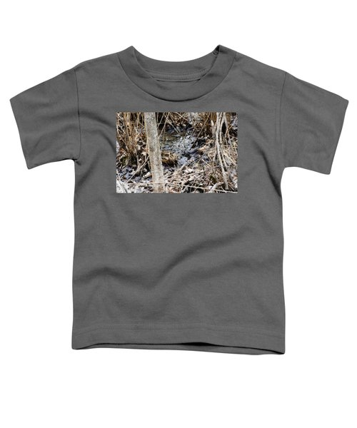 The Elusive American Woodcock Toddler T-Shirt