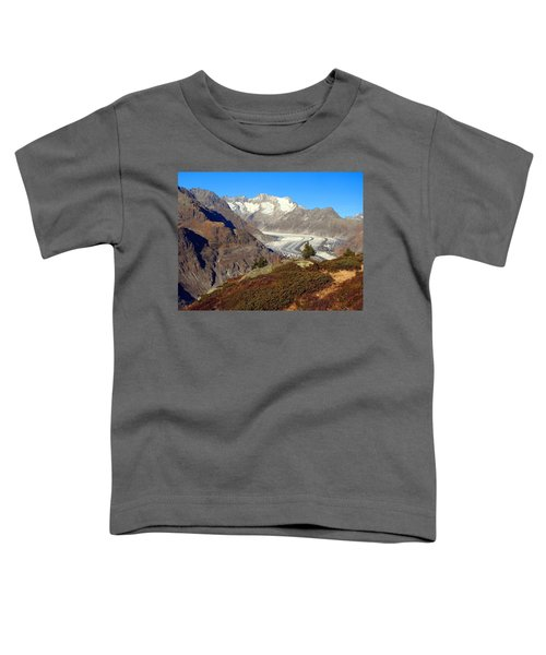 The Large Aletsch Glacier In Switzerland Toddler T-Shirt