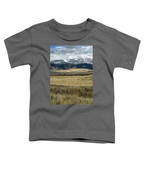 Tobacco Root Mountains Toddler T-Shirt