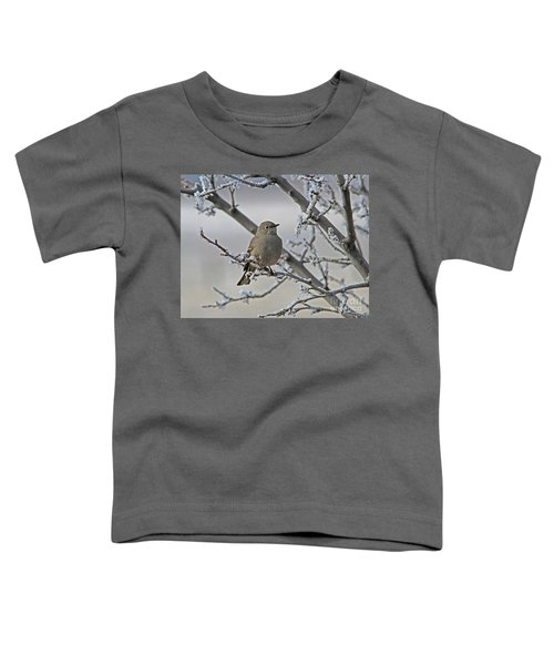 Townsend's Solitaire Toddler T-Shirt