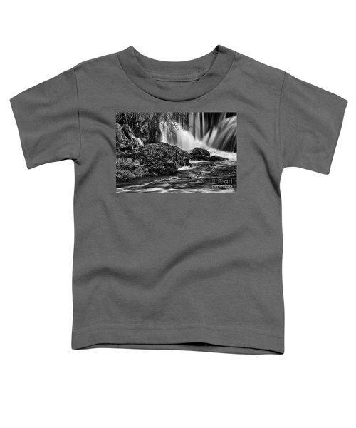 Tumwater Falls Park#1 Toddler T-Shirt