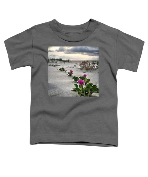 Weekend Glories 6.18.16 Toddler T-Shirt