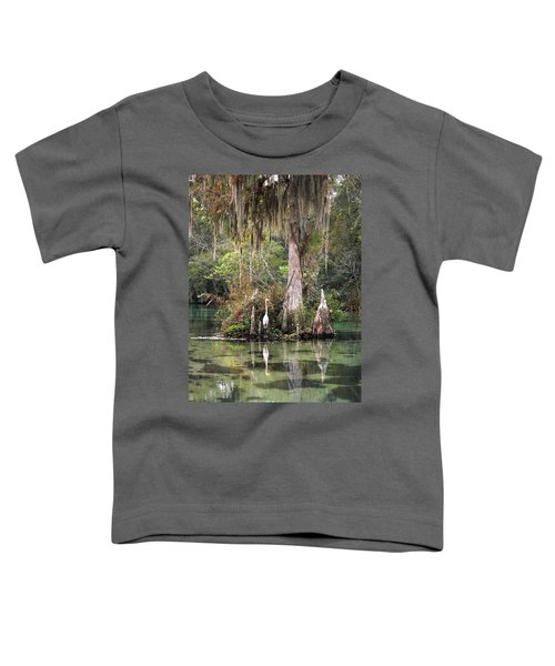 Weeki Wachee River Toddler T-Shirt