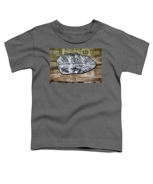 Westminster Military Memorial Toddler T-Shirt by Stephen Stookey