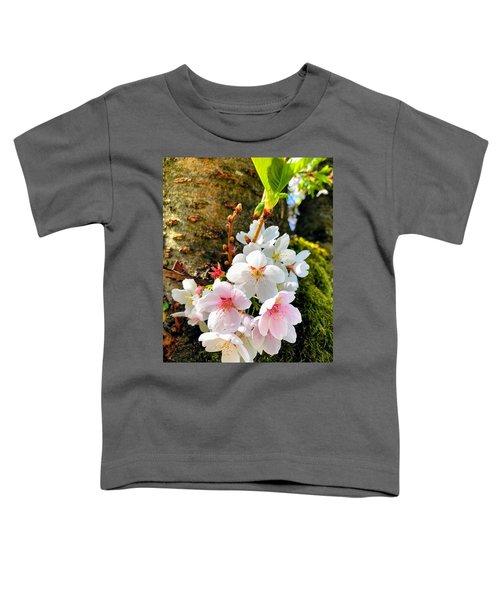 White Apple Blossom In Spring Toddler T-Shirt