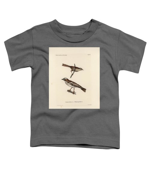 White-browed Sparrow-weaver And Grass Or Bush Warbler Toddler T-Shirt