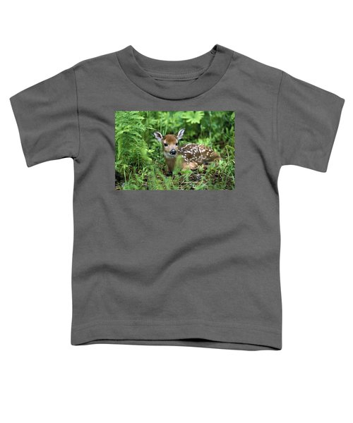 White-tailed Deer Odocoileus Toddler T-Shirt