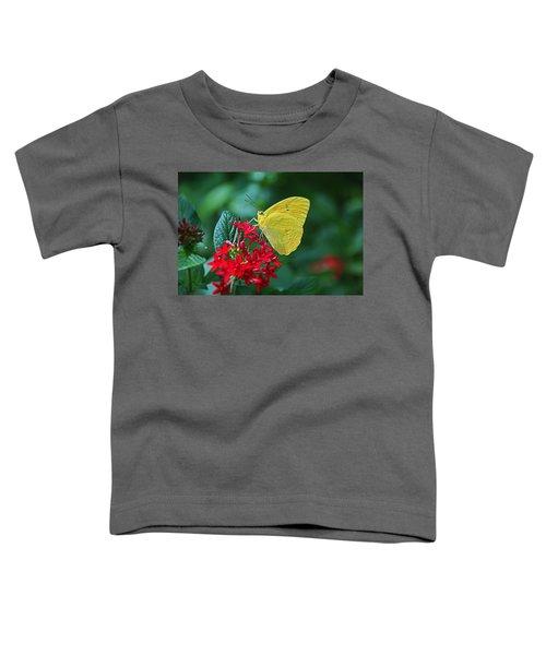 Winter Interlude Toddler T-Shirt
