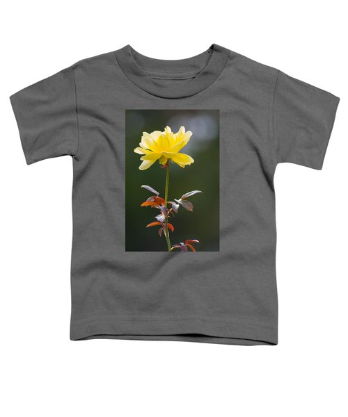 Yellow Rose Toddler T-Shirt