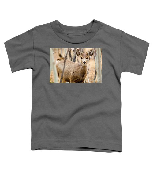 Mule Deer In The Pike National Forest Toddler T-Shirt