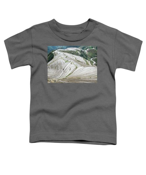 Terrace Fields Scenery In Spring Toddler T-Shirt