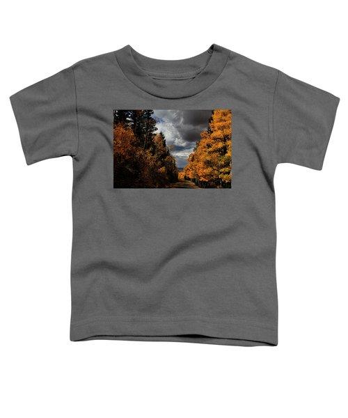 Rocky Mountain Fall Toddler T-Shirt