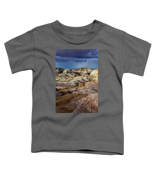 The Petrified Forest National Park Toddler T-Shirt