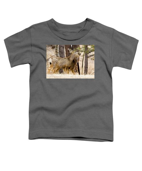 Mule Deer In The Pike National Forest Of Colorado Toddler T-Shirt