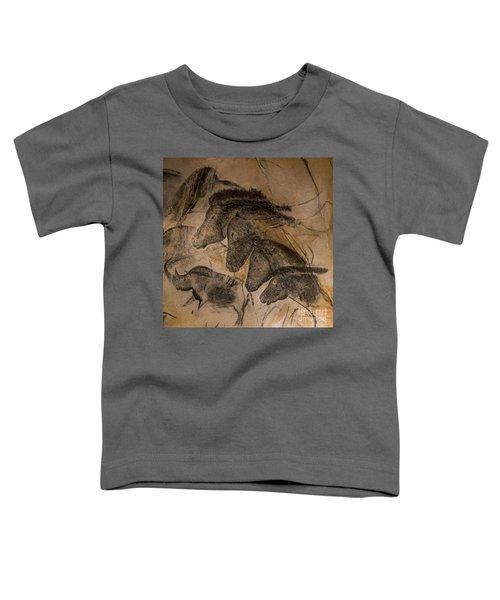 150501p087 Toddler T-Shirt