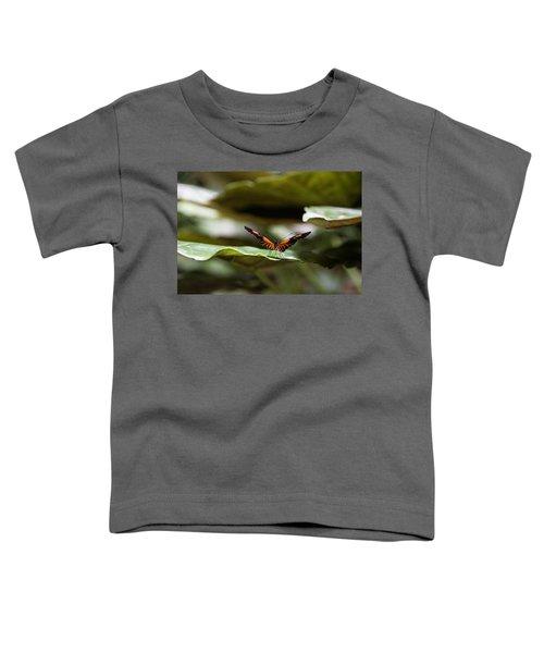 1527 Toddler T-Shirt