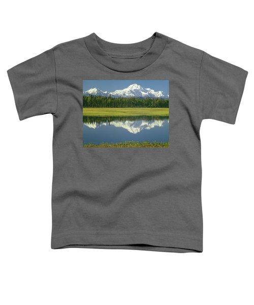 1m1325 Mt. Hunter And Mt. Denali Toddler T-Shirt