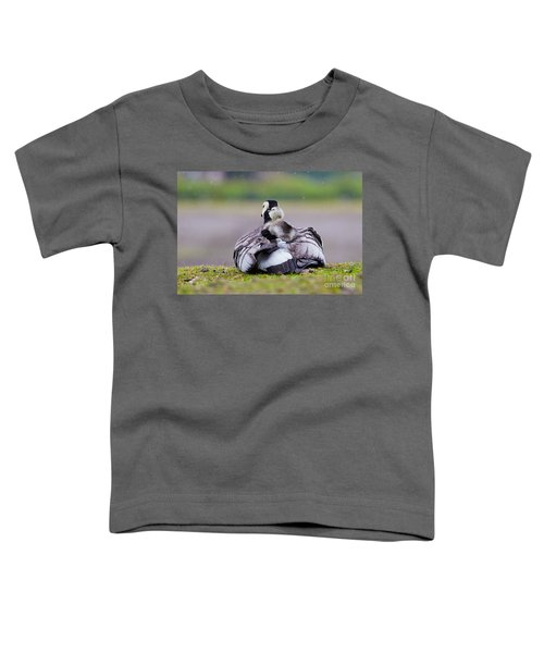 Barnacle Goose With Chick In The Rain Toddler T-Shirt