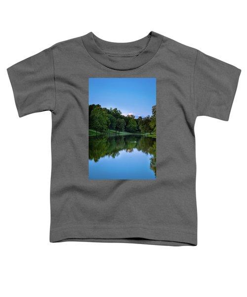 2 Ducks Toddler T-Shirt