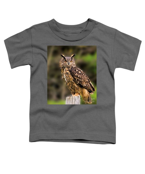 Eurasian Eagle Owl Perched On A Post Toddler T-Shirt