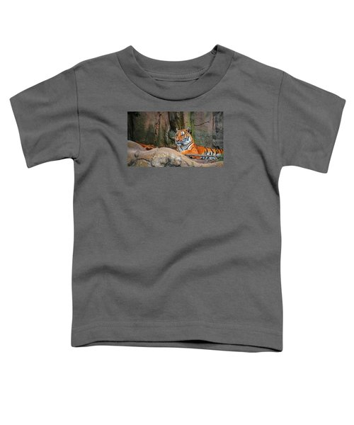 Fort Worth Zoo Tiger Toddler T-Shirt