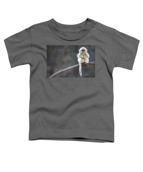 Golden Snub-nosed Monkey Rhinopithecus Toddler T-Shirt