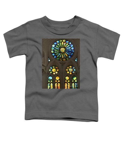 Graphic Art From Photo Library Of Photographic Collection Of Christian Churches Temples Of Place Of  Toddler T-Shirt